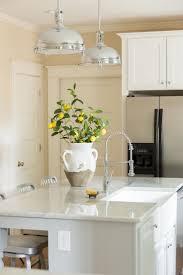 1044 best cottage farmhouse kitchens images on pinterest chip