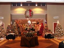 christmas trees of davidson county davidson county focus magazine