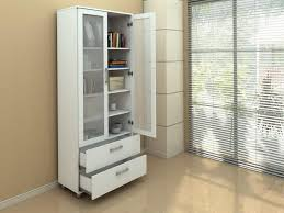 Book Cabinet With Doors by Contemporary Bookshelves With Glass Door Modern Contemporary