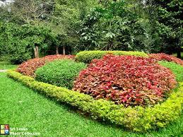 photo collection of botanical gardens royal botanical garden