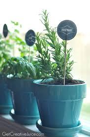 indoor kitchen herb garden gardening ideas