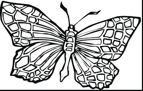 articles with butterfly coloring pages to print tag butterfly