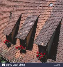 house roof detail dormers windows geraniums house roof