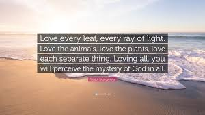 filemaker quote database 100 quote love beach love pictures beach love wallpapers