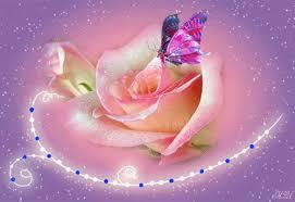 imagenes de amor con rosas animadas sinfonía de amor y amistad hermosas rosas con movimiento