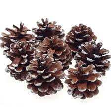 8pcs snow pinecone ornaments tree