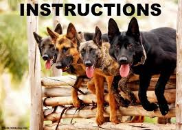 Dog Photo Albums U S Navy Military Working Dog Teams Facebook
