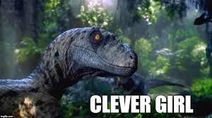 Velociraptor Meme - clever girl imgflip