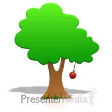 tree apple swinging
