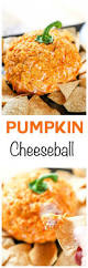 291575 best amazing appetizers images on pinterest recipes