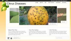 Plant Diseases Identification - new online citrus disease identification tool louisiana plant