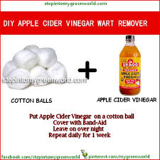 how to use vinegar to get rid of hair dye best 25 apple cider vinegar warts ideas on pinterest acv warts