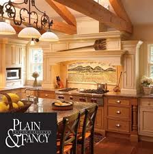 fancy cabinets for kitchen plain and fancy cabinets b t kitchens baths