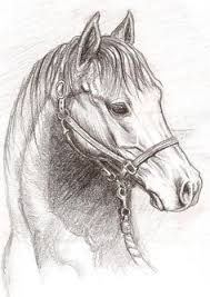 horse horse drawing horse print horse pencil drawing print