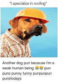 Dog Pun Meme - i specialize in roofing another dog pun because i m a weak human