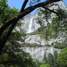 Yosemite Lodge At The Falls Front Desk Phone Number Yosemite Housekeeping Camp 136 Photos U0026 111 Reviews