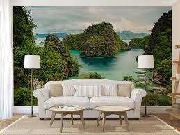 philippines nature wall decal photo wall mural peel and zoom