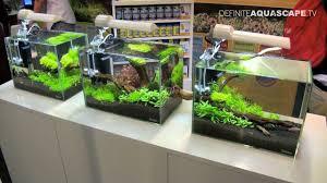 aquascaping aquarium ideas from aquatics live 2011 part 1 youtube