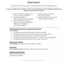 j2ee fresher resume cv j2ee english sample cv format sample