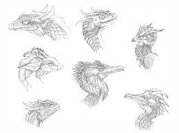 dragon head sketches by kimrhodes on deviantart