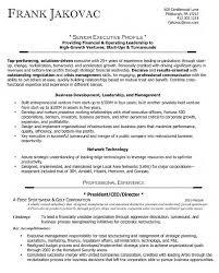Finance Executive Resume Ceo Sample Resume Resume Cv Cover Letter