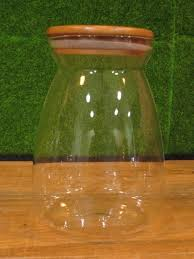 terrarium glass container enclosed j end 3 7 2019 12 15 am