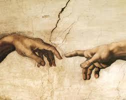 Leonardo Da Vinci Human Anatomy Drawings Anatomy Images