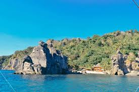 tour the island of dolphins u0026 wonderful sea creatures in 3 days