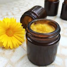 Calendula Flowers 10 Reasons Why Calendula Flower Is The Ultimate Healer Urbal Stories