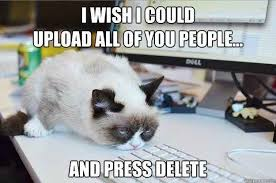 9 Best Grumpy Cat Memes - 32 funny angry cat memes for any occasion freemake