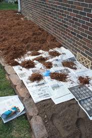 fascinating flower beds around tree ideas for your yard garden ideas