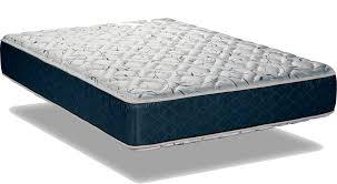 wolf mattress the mattress expert