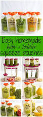 homemade baby food pouches how to and 5 recipes family food on