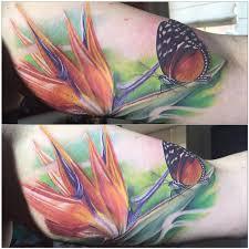 mystic eye tattoos nature bird of