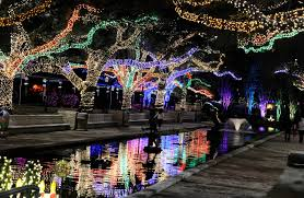 Zoo Lights In Houston by These Houston Area Events Can Entertain The Kids While They U0027re Out