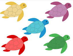 colors clipart turtle pencil and in color colors clipart turtle