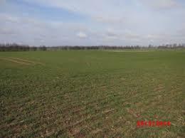 landwirtschaftliche fläche kaufen landwirtschaften mecklenburg vorpommern gewerbe landwirtschaft