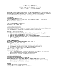 Examples Of Academic Achievements Resume by Download Criminal Justice Resume Objective Examples