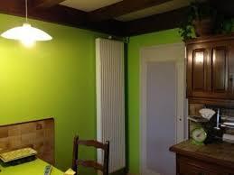 cuisine verte anis decoration salon et salle a manger 12 cuisine vert anis kirafes