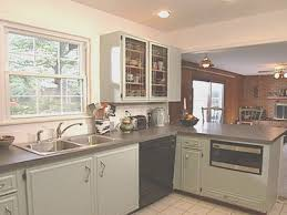 kitchen creative paint your kitchen cabinets design ideas modern