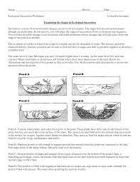 science worksheets ecosystem biology worksheet get now doc