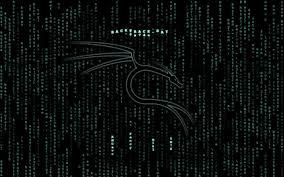 matrix backtracks walldevil