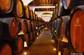Wine Cellars Porto - portugal all over oporto