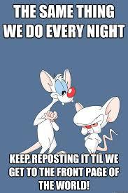 Pinky And The Brain Meme - pinky and the brain memes quickmeme