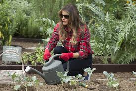 melania trump holds her first event in white house garden michelle