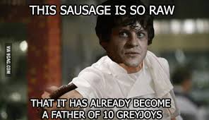 Gordon Ramsey Memes - gordon ramsay snow and his sausage 9gag