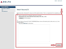 delta airlines baggage policy how to apply for delta airlines jobs online at delta com careers