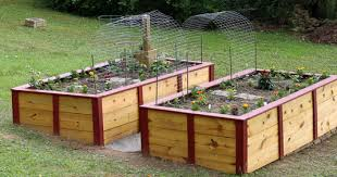Vegetable Garden Bed Design by How To Build A Raised Vegetable Garden Gardening Ideas