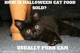 Meme Halloween - halloween joke black cat meme 2 how is halloween cat food sold
