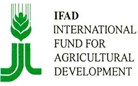 Rural Finance In Selected Ifad Financed Operations Dr Un Agency Examines Approach To Decentralized Operations In Africa